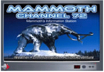 mammothchannel
